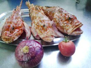 Cap Roig Cabracho Skorpion fish